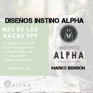 Diseños de Instinto Alpha