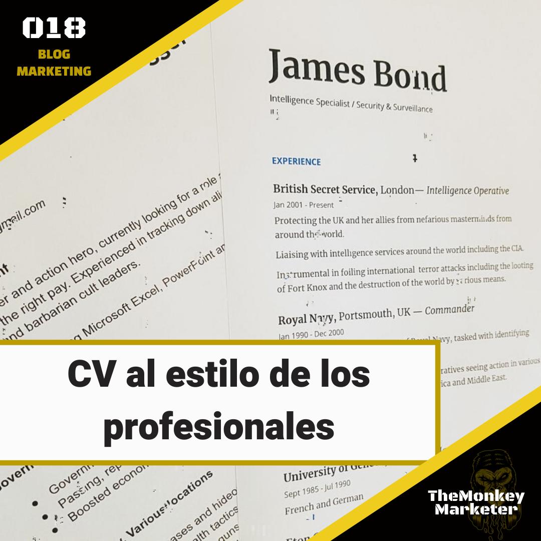 CV al estilo de los profesionales